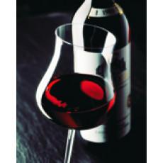 Glas Barolo Rotwein