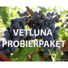 E43 Vetluna Probierpaket