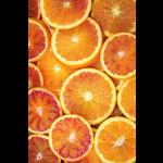 Tarocco Orangen Bio 3 kg (ArcoBio)* Lieferung Februar