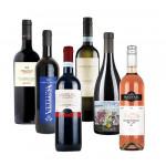 Lieblingsweine unserer Kunden des Jahres 2020 (12 Fl.) - frei Haus