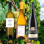 Enoteca Sauvignon Blanc (3 x 2 Fl.) - ggfs.+ Fracht