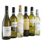 Weißweine für jeden Tag (6 Fl.) ggf.+Fracht