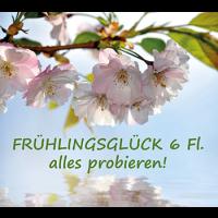 Frühlingsglück Probe 6 Fl. sortiert