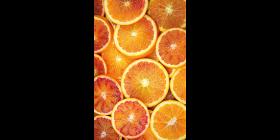 Tarocco Orangen