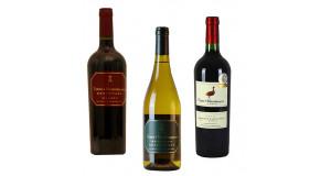 Weine aus Argentinien (6 Fl.) - ggfs.+ Fracht